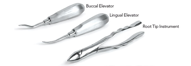 Root Tip Extraction - Tools