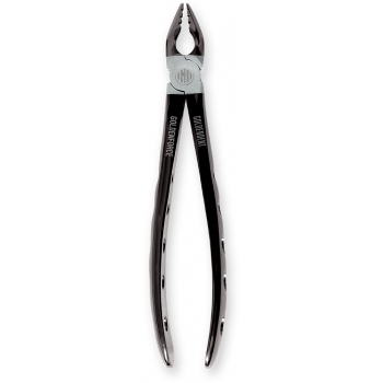 GoldenForce Series - Upper Anterior Forceps